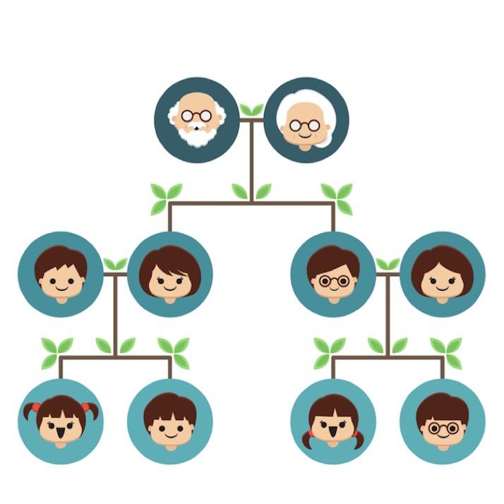 você sabe o que é a árvore genealógica nacionalitália